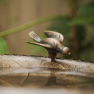 XBrand bronze painted birdbath bb3332bne