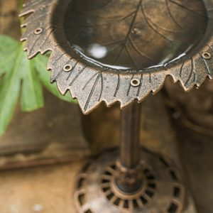 XBrand Bronze Painted Leaf Birdbath (BB3349BNE)