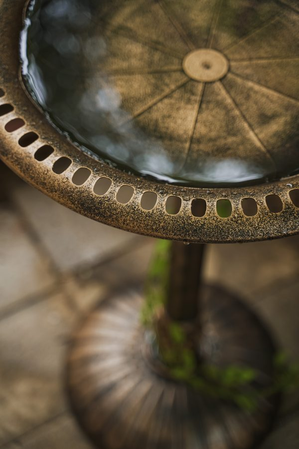 XBrand Bronze Painted Flower Design Birdbath (BB3363BNE)