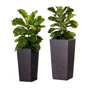 XBrand Black Square Flower Pot Planter (PL2915BK)