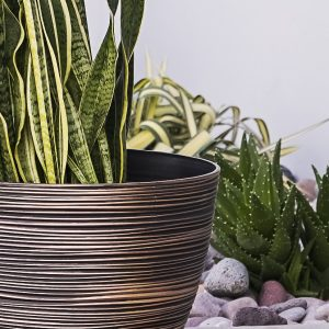 XBrand Bronze Indoor Outdoor Pot Planter (PL3417BNE)