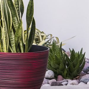 XBrand Red Indoor Outdoor Pot Planter (PL3417RD)