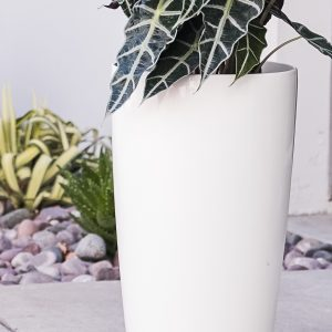 XBrand White Self Watering Planter Pot (PL3448WT)
