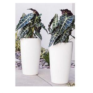 XBrand White Self Watering Planter Pot (PL3448WT)