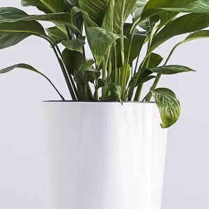 XBrand White Self Watering Planter Pot (PL3479WT)