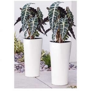 XBrand White Self Watering Planter Pot (PL3479WT)