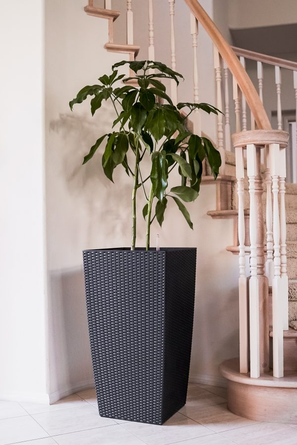 XBrand Black Rattan Planter Pot (PL3530BK)