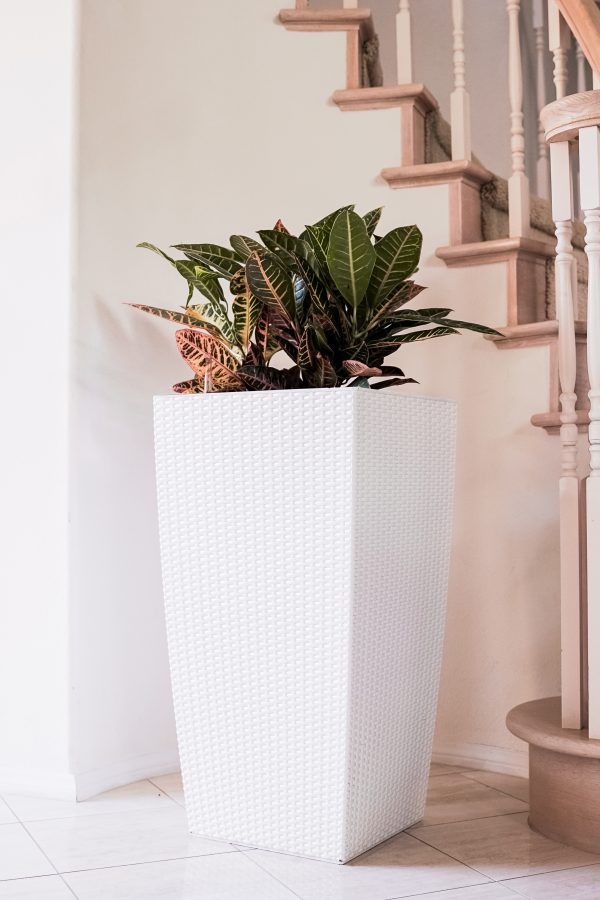 XBrand White Rattan Planter Pot (PL3530WT)